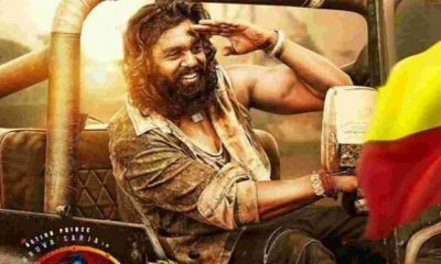 pogaru-box-office-collection-|-day-wise-|-hit-or-flop
