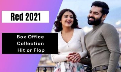 red-box-office-collection-|-hit-or-flop